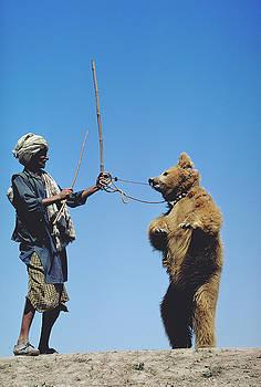 Dancing Bear in Pakistan by Carl Purcell