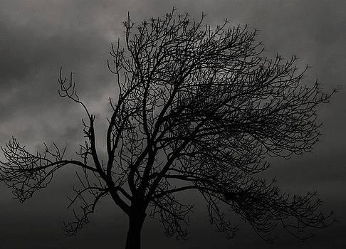 Joe Bledsoe - Darkness
