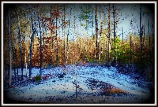 First Snow by Beverly Hammond