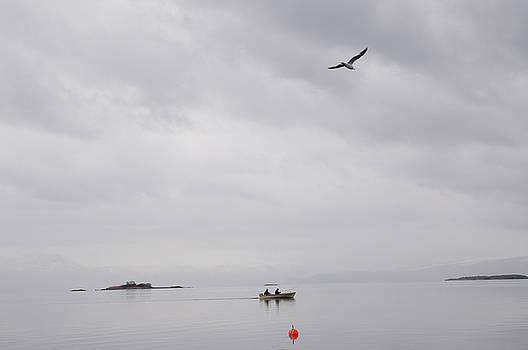 Fishing in Norway by Tamara Sushko