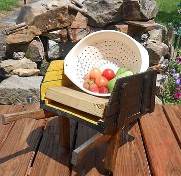 Garden Delights by Darlene Custer