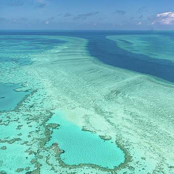 Francesco Riccardo Iacomino - Great Barrier Reef, Australia