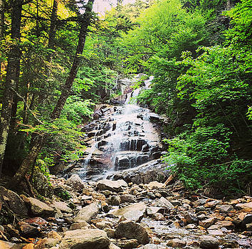 Hiking New Hampshire by H Surette