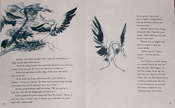 Anne Cameron Cutri - Inside illustration for Henry the Hestiant Heron