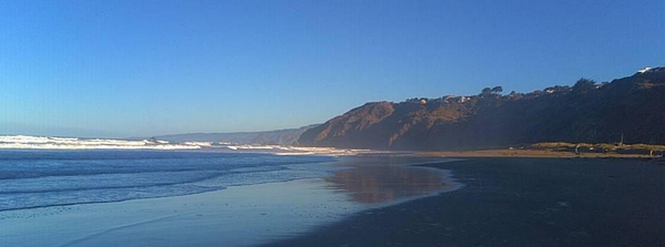 Lisa Dunn - Irish Beach