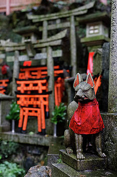 Kyoto by David Harding