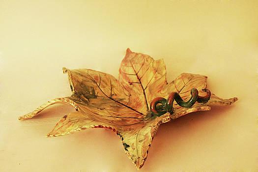 Leaf plate1 by Itzhak Richter