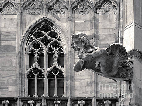 Gregory Dyer - Milan Italy Cathedral Gargoyle