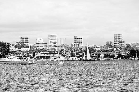Scott Pellegrin - Newport Harbor