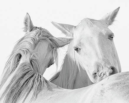 Pals by Ron  McGinnis