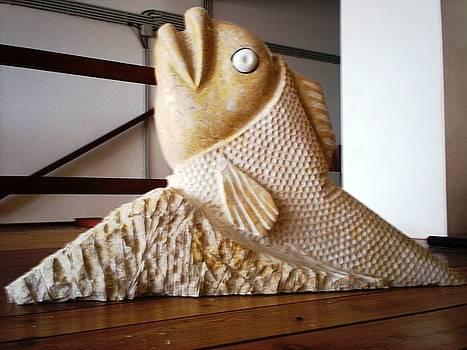Peixe Armadura by Joel Correia