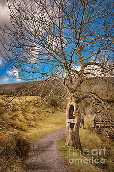 Mariusz Talarek - Pendle Hill Walk, North Yorkshire, UK