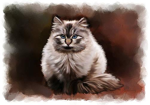 Pet Cat Portrait by Michael Greenaway