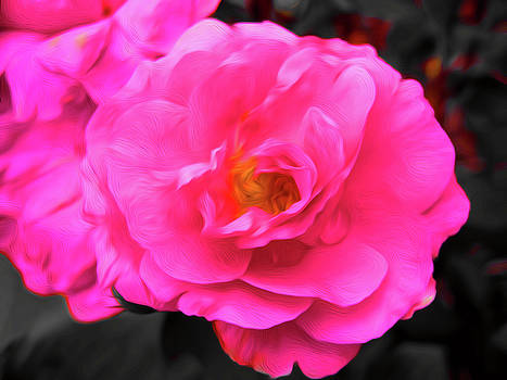 Pink flower by Andre Faubert