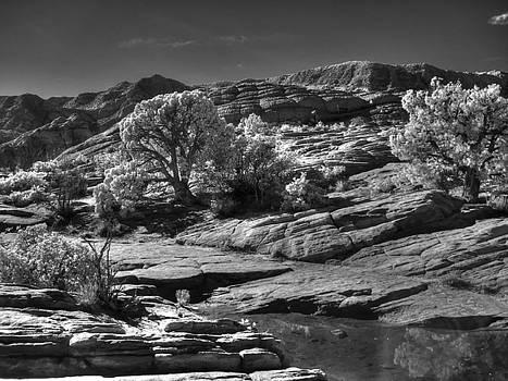 Snow Canyon Utah by John Johnson