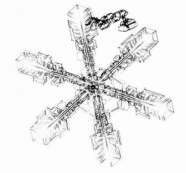 Snowflake by Kyle Lavey