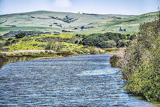 Tomales Bay In Point Reyes National Seashore Park Near San Franc by Alex Grichenko