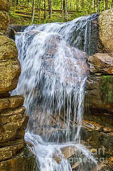 Patricia Hofmeester - Waterfall