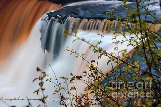 Mariusz Talarek - Aysgarth Falls