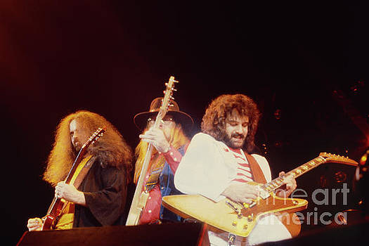 38 Special - Cow Palace SF 3-15-80 by Daniel Larsen