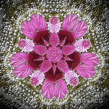 3D Pink Purple Mandala Painting by Heinz G Mielke