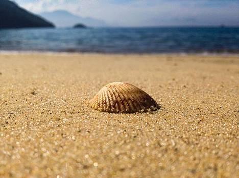Beach by Cesar Vieira
