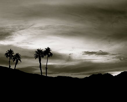 Black and White Sunset From A Desert Trip by Desiderata Gallery