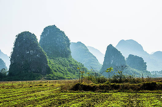 Countryside scenery in the mist by Carl Ning