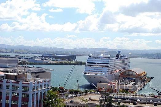 Gary Wonning - Cruise ship in port