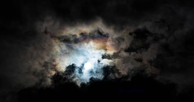 Exposing for the Light by Steven Poulton