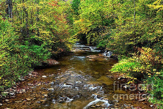 Fall Color Leatherwood Creek by Thomas R Fletcher