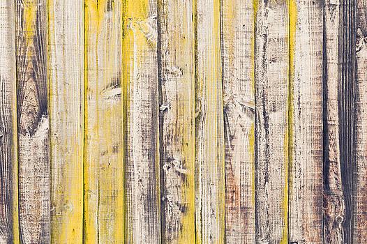 Fence panels by Tom Gowanlock