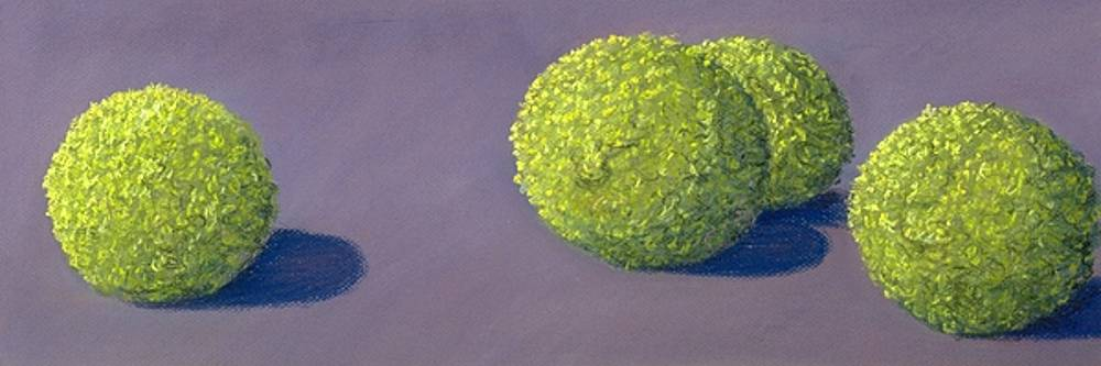 4 Hedge Apples by Mary Erbert