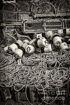 Elena Elisseeva - Lobster traps