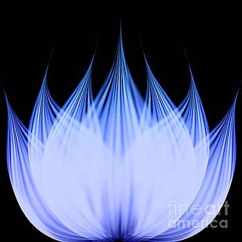 Lotus Flower by Atiketta Sangasaeng