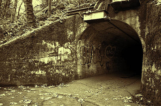 Marilyn Wilson - End of the Tunnel - sepia