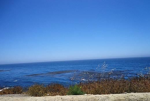 Blue Skies by Marian Jenkins
