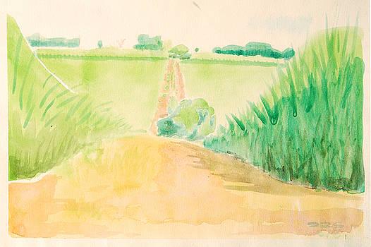 Reed Road by Daniel Ribeiro