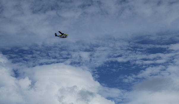 Sea Plane by Ehab Amin