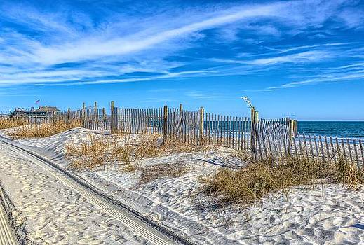 Paulette Thomas - The Beach
