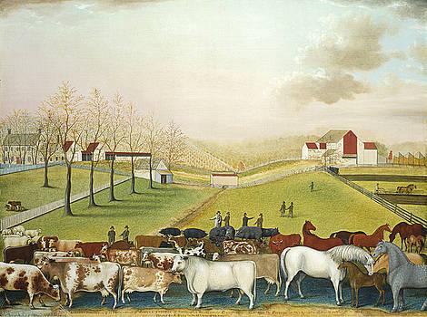 Edward Hicks - The Cornell Farm