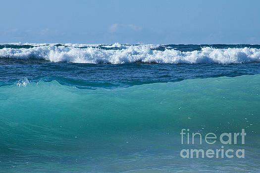 The Blue Sea by Sharon Mau