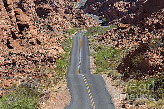 Valley of Fire by Daniel  Knighton