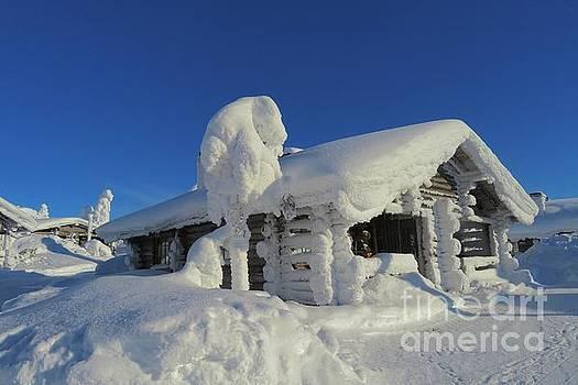 Winter by Irina Hays