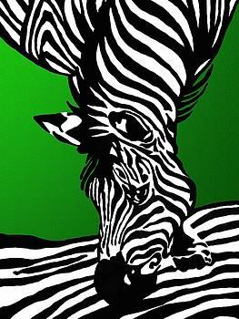 Zebra  by Gabi Siebenhuehner