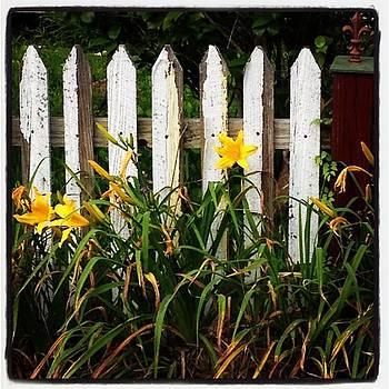 Instagram Photo by Faith Broussard