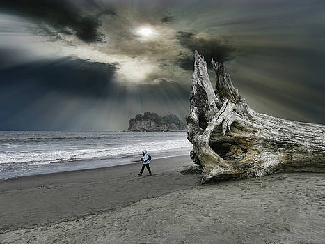4392 by Peter Holme III