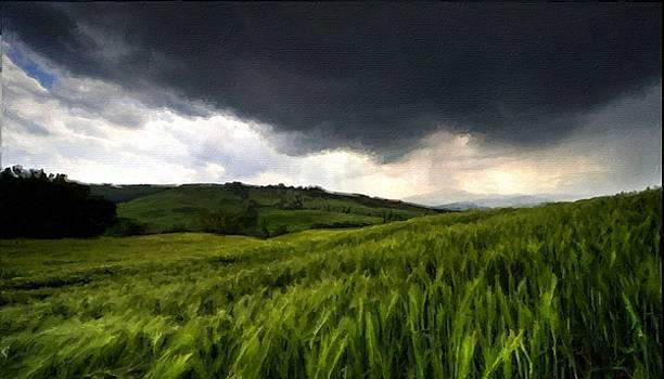 Landscape by Malinda Spaulding