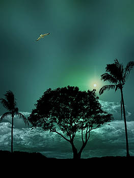 4420 by Peter Holme III
