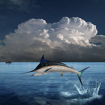 4439 by Peter Holme III